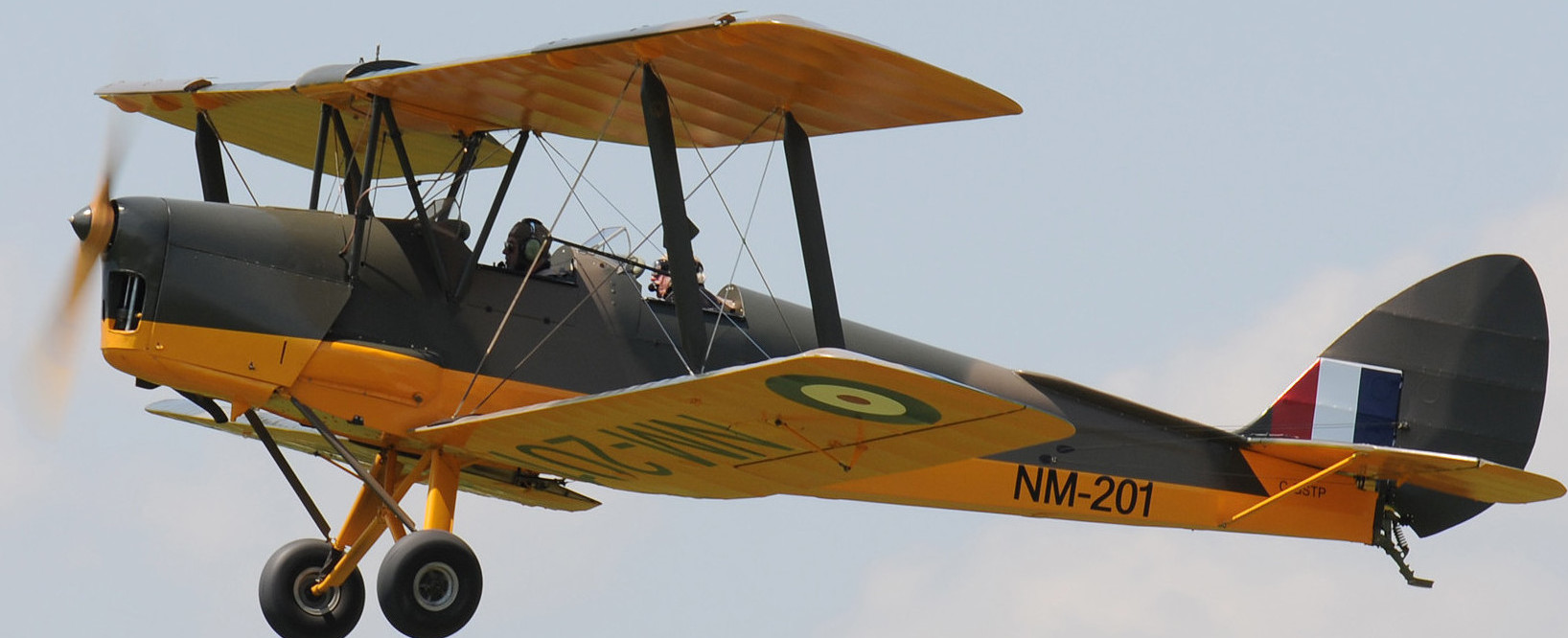 40 Tiger Moth by Eric Dumigan